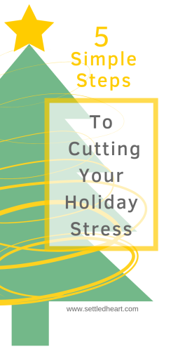 5 Steps to Cutting Holiday Stress